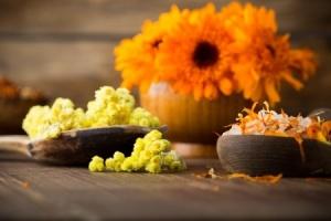 טיפול באמצעות פרחי באך