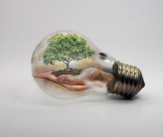 בדיקות של איכות הסביבה
