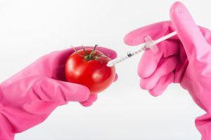 פתרונות מתקדמים לאבטחת איכות מזון מבית כימוביל