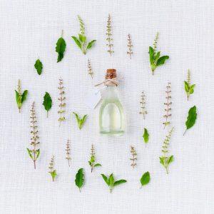 צמחי מרפא – למה הם טובים?