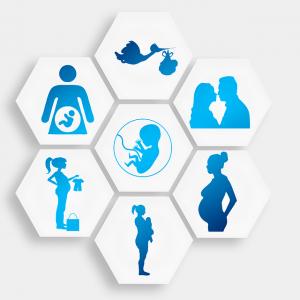 לידה, בריחת שתן ודרכי הטיפול האפשריות