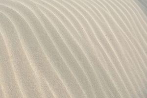 הילדים משחקים בחול בגן – על המזיקים שמשחקים שם גם