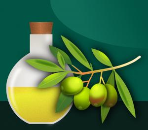 שמן זית – איפה אנחנו יכולים למצוא שמן ברמה טובה
