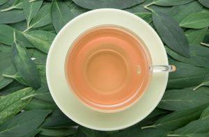 מה זה חליטת תה קוביות?